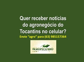 whatsapp do site capa